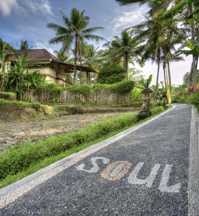 Yoga Retreats Bali The Travel Yogi Soulshine Bali